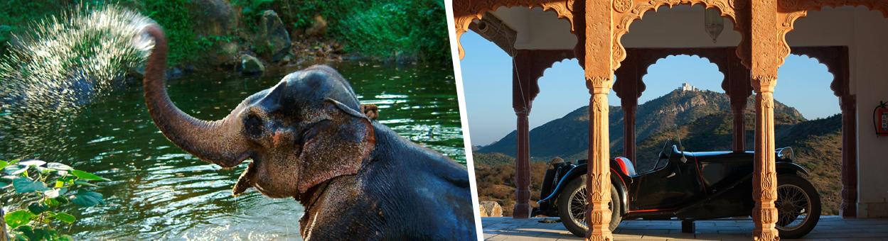 Indian Tour Destinations