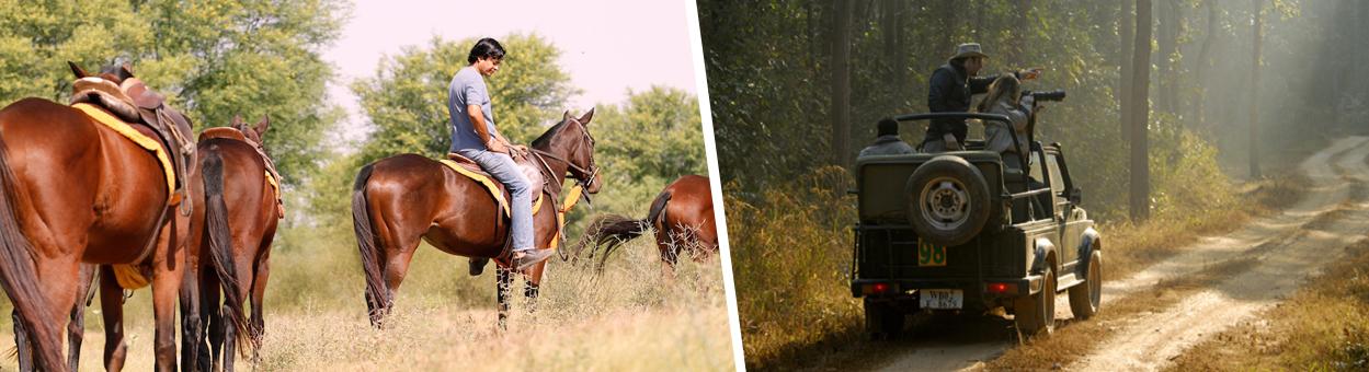 TREKS / WALKS / CYCLING / HORSE, CAMEL, JEEP SAFARIS